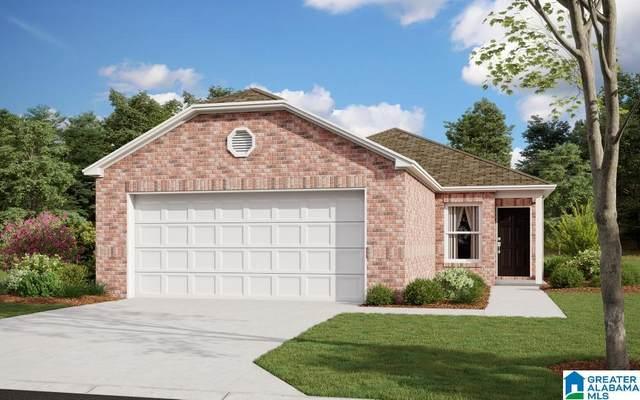 1100 Brookhaven Drive, Odenville, AL 35120 (MLS #1298321) :: Josh Vernon Group