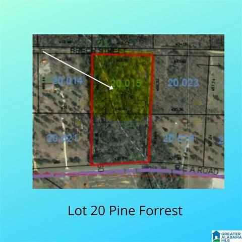 0 Beech Street Lot 20, Maplesville, AL 36750 (MLS #1298606) :: Lux Home Group