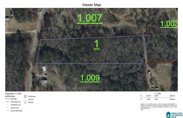 000 Wolf Pond Road #1, Talladega, AL 35160 (MLS #1298666) :: Kellie Drozdowicz Group