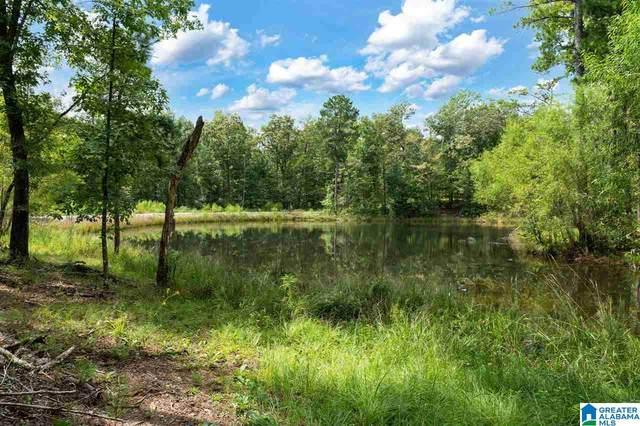 5720 Black Creek Drive #4, Bessemer, AL 35022 (MLS #1298754) :: Kellie Drozdowicz Group
