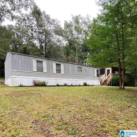 306 Tanbark Road, Warrior, AL 35180 (MLS #1298796) :: Lux Home Group