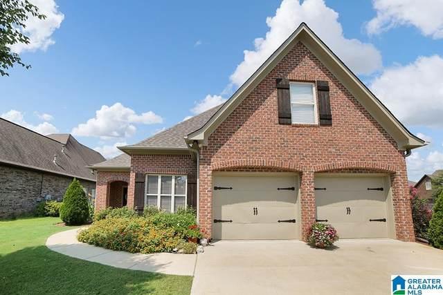 509 Horizon Street, Maylene, AL 35114 (MLS #1298831) :: Bentley Drozdowicz Group