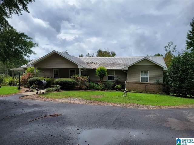 5334 County Road 22, Crane Hill, AL 35053 (MLS #1298893) :: Josh Vernon Group