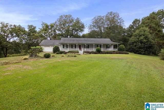 205 Forrest Ridge Road, Ranburne, AL 36273 (MLS #1298971) :: Lux Home Group