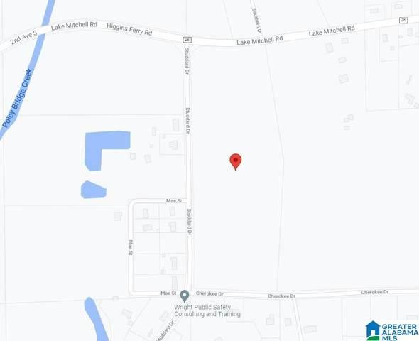 0 Lake Mitchell Road #0, Clanton, AL 35045 (MLS #1299026) :: JWRE Powered by JPAR Coast & County