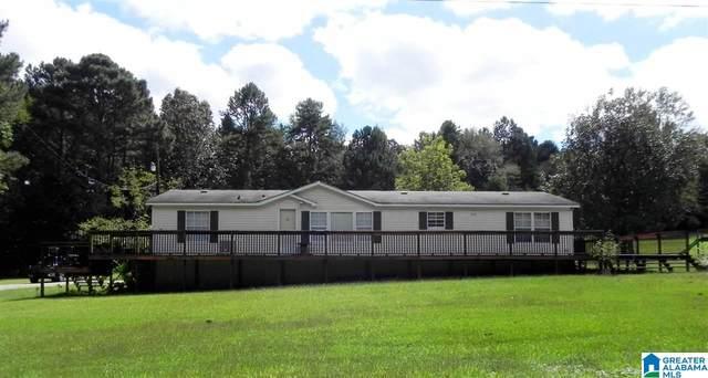 375 Macon Johnson Road, Jacksonville, AL 36265 (MLS #1299126) :: Josh Vernon Group