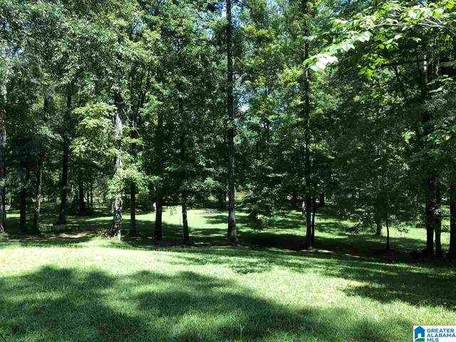 18041 Northview Circle #34, Northport, AL 35475 (MLS #1299163) :: Lux Home Group