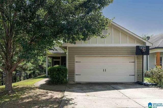 245 Hathaway Lane, Odenville, AL 35120 (MLS #1299220) :: Josh Vernon Group
