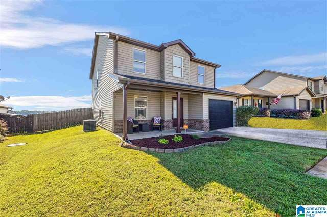 55 Briar Ridge Lane, Odenville, AL 35120 (MLS #1299284) :: Howard Whatley