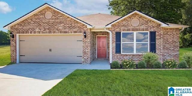 16388 Natchez Drive, Moundville, AL 35474 (MLS #1299582) :: LocAL Realty