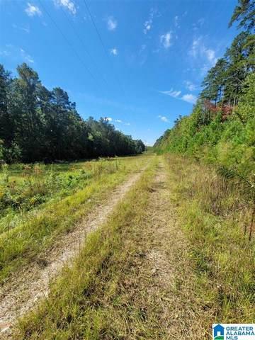 0 County Road 66 26 Acres, Heflin, AL 36264 (MLS #1299603) :: JWRE Powered by JPAR Coast & County