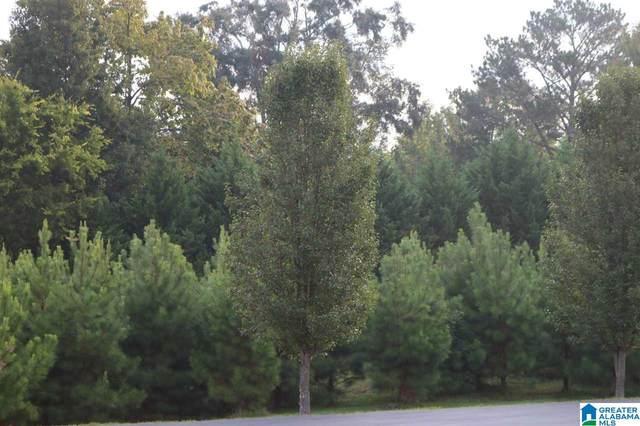 252 Parkview Drive #35, Sylvan Springs, AL 35118 (MLS #1299903) :: Kellie Drozdowicz Group