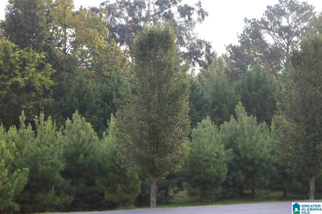6027 Parkview Trail #37, Sylvan Springs, AL 35118 (MLS #1299904) :: Kellie Drozdowicz Group