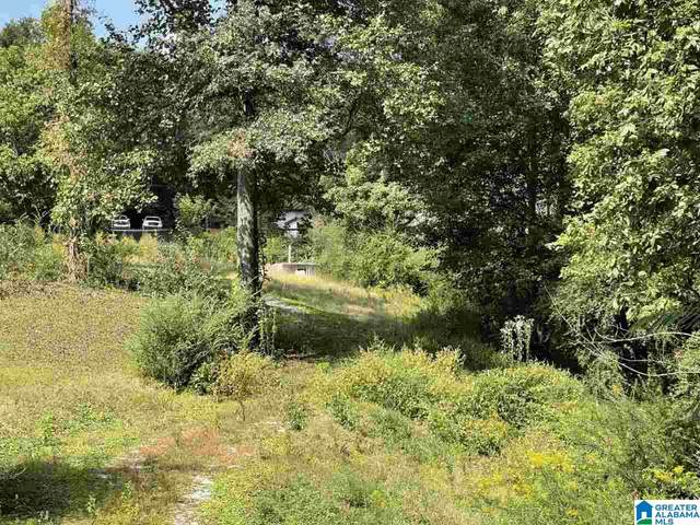 1811 Brookside Mt Olive Road #29, Mount Olive, AL 35117 (MLS #1300015) :: LIST Birmingham