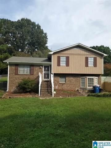 565 N Pine Hill Road, Birmingham, AL 35217 (MLS #1300122) :: EXIT Magic City Realty