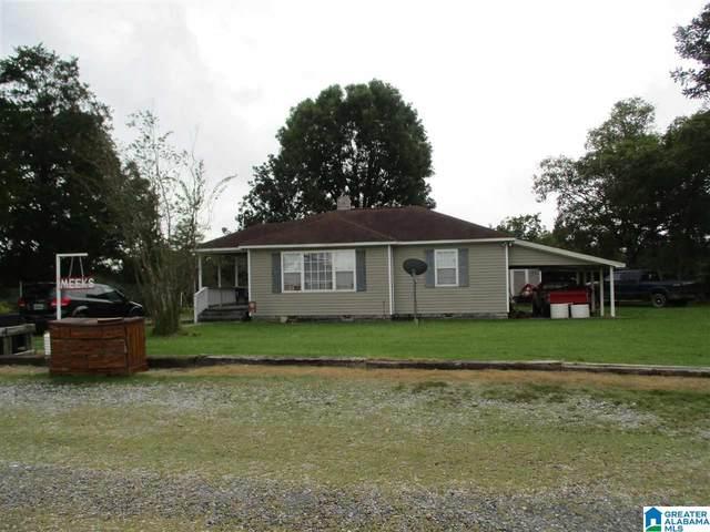956 County Road 99, Verbena, AL 36091 (MLS #1300191) :: LIST Birmingham