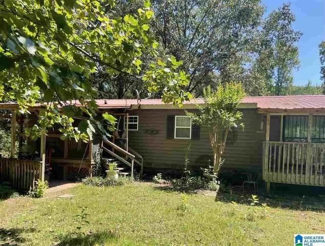 8422 Clayton Road, Springville, AL 35146 (MLS #1300211) :: Josh Vernon Group