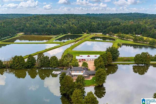 11495 Malone Creek Road, Tuscaloosa, AL 35466 (MLS #1300311) :: Lux Home Group