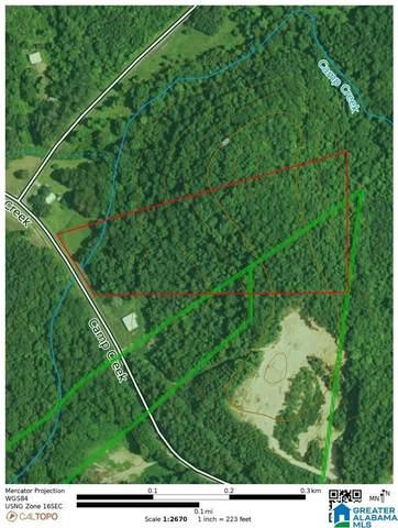0 Camp Creek Road #0, Cropwell, AL 35054 (MLS #1300327) :: The Natasha OKonski Team