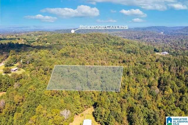 0 Tyler Hill Road Tyler Hill Road, Warrior, AL 35180 (MLS #1300652) :: JWRE Powered by JPAR Coast & County