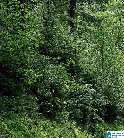 1400 Silver Run Road #0, Munford, AL 36268 (MLS #1300719) :: Kellie Drozdowicz Group