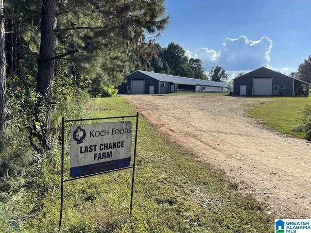 1854 County Road 103, Woodland, AL 36280 (MLS #1300844) :: Howard Whatley
