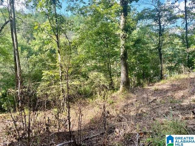 0 Goldwire Circle #1, Alabaster, AL 35007 (MLS #1300849) :: Lux Home Group