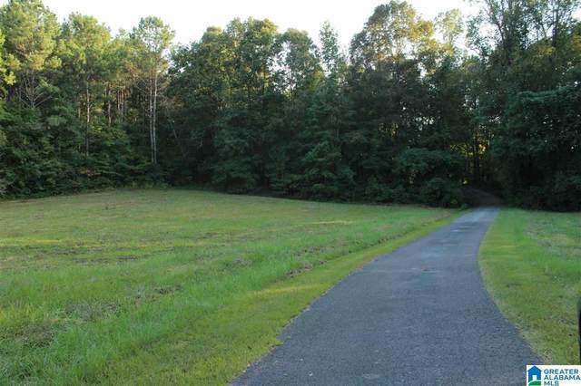 0 Hidden Valley Trail N/A, Oneonta, AL 35121 (MLS #1300880) :: EXIT Magic City Realty
