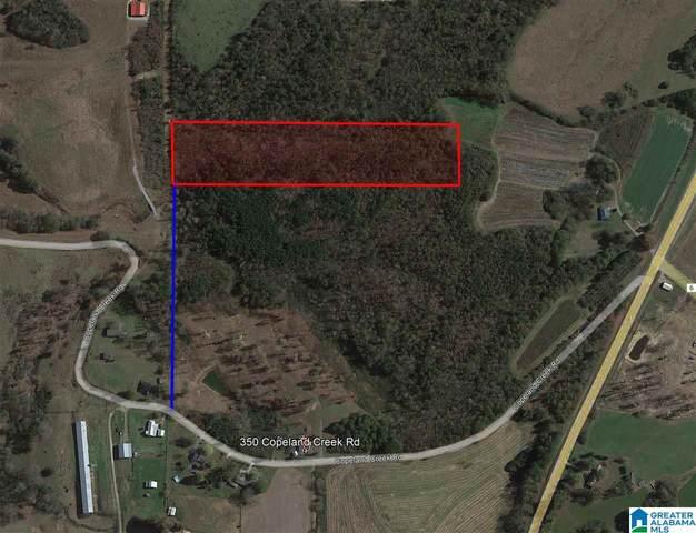 0 Copeland Creek Road, Blountsville, AL 35031 (MLS #1300932) :: EXIT Magic City Realty