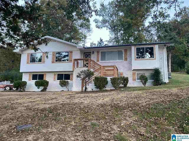 154 Woodard Drive, Oneonta, AL 35121 (MLS #1300995) :: EXIT Magic City Realty