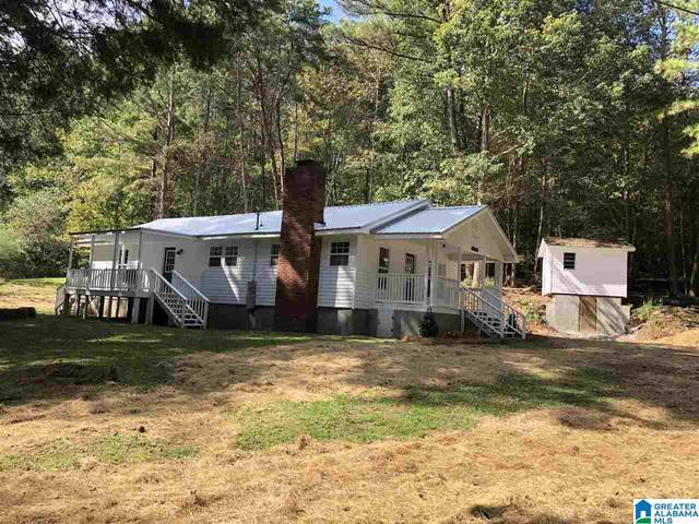 3155 Roberts Mill Pond Road, Pell City, AL 35125 (MLS #1301033) :: Bailey Real Estate Group