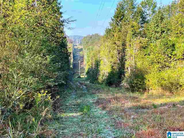 County Road 222 28 Acres, Lineville, AL 36266 (MLS #1301042) :: Howard Whatley
