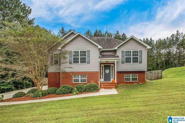 703 Isbell Road, Odenville, AL 35120 (MLS #1301112) :: EXIT Magic City Realty