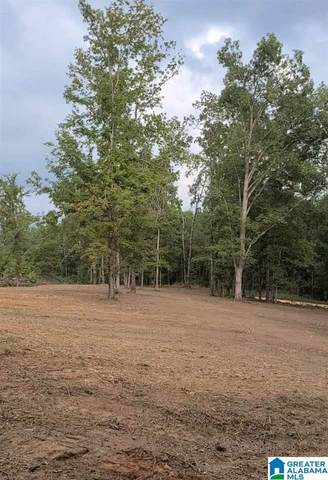1363 Alston Farm Road #1, Columbiana, AL 35051 (MLS #1301152) :: Josh Vernon Group