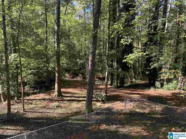 670 Moss Rock Circle, Warrior, AL 35180 (MLS #1301261) :: Howard Whatley