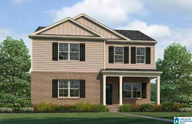 367 Rock Terrace Drive, Helena, AL 35080 (MLS #1301369) :: Krch Realty