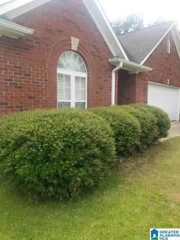 205 Annie Lane, Pleasant Grove, AL 35127 (MLS #1301413) :: Kellie Drozdowicz Group