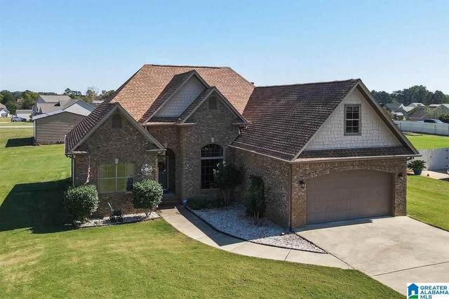 142 Farmingdale Drive, Harpersville, AL 35078 (MLS #1301489) :: Howard Whatley