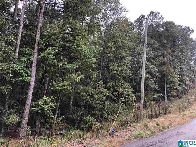 13 Hickory Lane #13, Odenville, AL 35120 (MLS #1301614) :: Josh Vernon Group