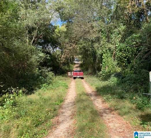 Francis Avenue .44 Acres, Anniston, AL 36201 (MLS #1301727) :: LocAL Realty
