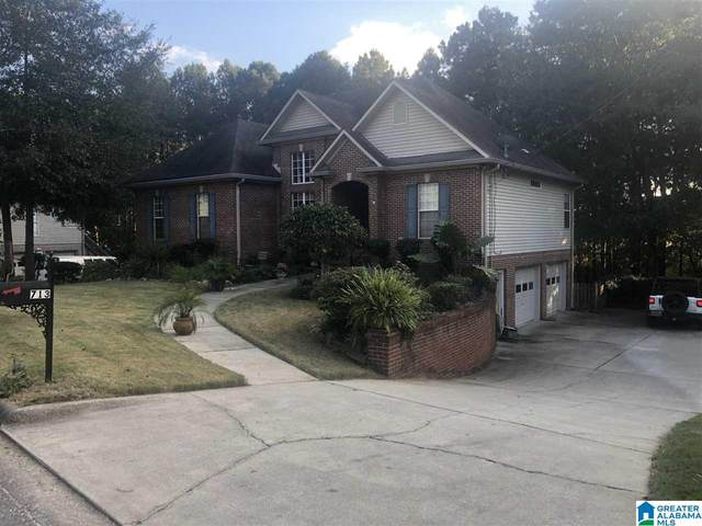 713 Shelby Forest Trail, Chelsea, AL 35043 (MLS #1301846) :: Lux Home Group