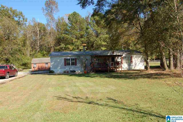 144 Asaro Place N, Springville, AL 35146 (MLS #1302147) :: The Fred Smith Group   RealtySouth