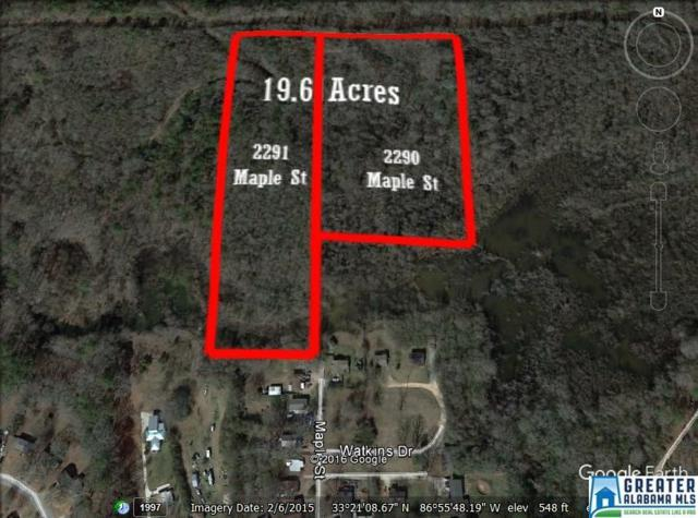 2291 Maple St SE 19.6 Acres, Bessemer, AL 35022 (MLS #769057) :: Williamson Realty Group