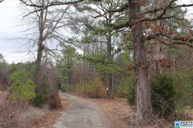 0 Jones Village Rd #0, Springville, AL 35146 (MLS #771373) :: Brik Realty
