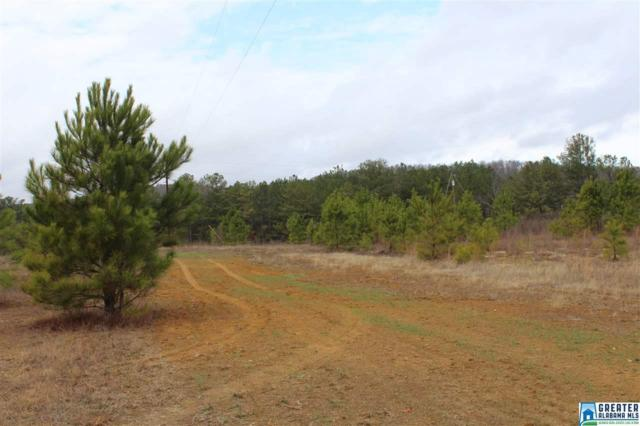 0 Jones Village Rd #00, Springville, AL 35146 (MLS #771378) :: Brik Realty