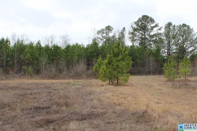 0 Jones Village Rd #000, Springville, AL 35146 (MLS #771379) :: Brik Realty