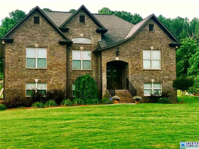 125 Village Trace Dr, Springville, AL 35146 (MLS #786050) :: Josh Vernon Group