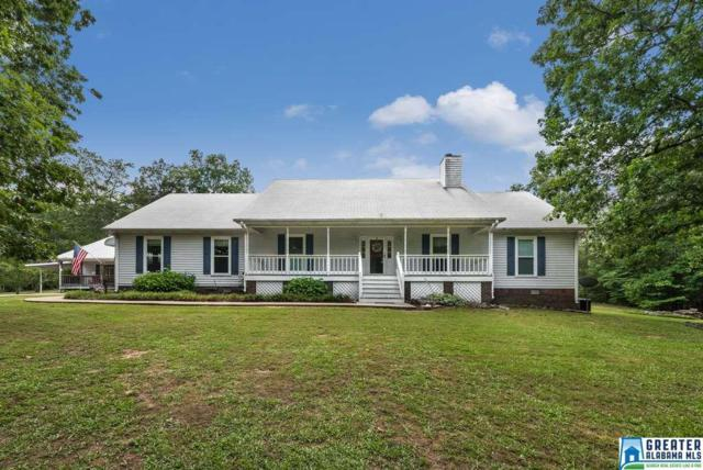 265 Canoe Creek Rd, Springville, AL 35146 (MLS #787061) :: Josh Vernon Group
