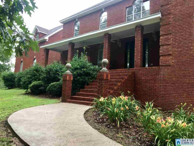 155 Old Margaret Rd, Odenville, AL 35120 (MLS #787684) :: Josh Vernon Group