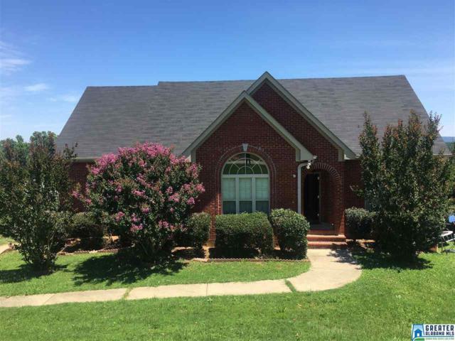 557 Woodland Ridge Rd, Odenville, AL 35120 (MLS #788169) :: Josh Vernon Group